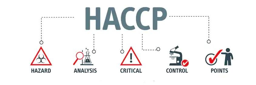 HACCP Consultant